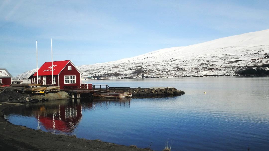 探寻冰冻星球——英国留学生如何利用假期去冰岛